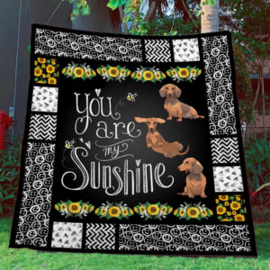 Dachshund You Are My Sunshine Quilt Blanket Great Customized Blanket Gifts For Birthday Christmas Thanksgiving