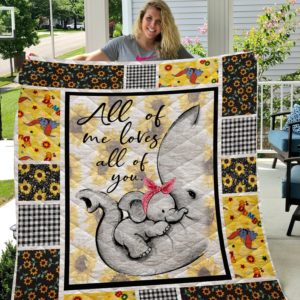 All Of Me Loves All Of You Elephants Quilt Blanket