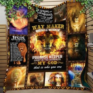 Jesus Lion Light In The Darkness My God That Is Who You Are Quilt Blanket Great Customized Blanket Gifts For Birthday Christmas Thanksgiving