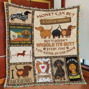 Dachshund Money Can Buy A Lot Of Things Quilt Blanket Great Customized Blanket Gifts For Birthday Christmas Thanksgiving Perfect Gifts For Dachshund Lovers