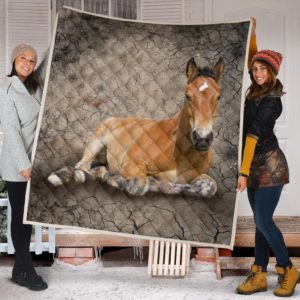 Horse Dry Soil Cracking Quilt Blanket Great Customized Blanket Gifts For Birthday Christmas Thanksgiving Anniversary