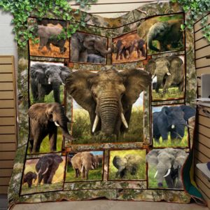 Love Elephant African And Asian Elephants Quilt Blanket Great Customized Blanket Gifts For Birthday Christmas Thanksgiving