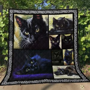 Black Cat Beautiful Longhair Cats Quilt Blanket Great Customized Blanket Gifts For Birthday Christmas Thanksgiving