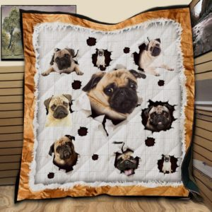 Pug Funny Lovely Quilt Blanket Great Customized Gifts For Birthday Christmas Thanksgiving