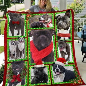 Bull Terrier Christmas Awesome Dogs Wearing Red Scarf, Christmas Hat, Christmas Wreath Quilt Blanket Great Customized Blanket Gifts For Birthday Christmas Thanksgiving