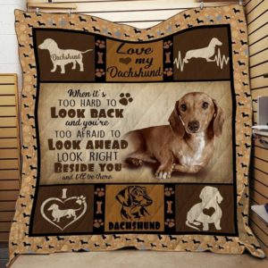 Dachshund Dog Beside You And I'll Bet There Quilt Blanket Great Customized Blanket Gifts For Birthday Christmas Thanksgiving