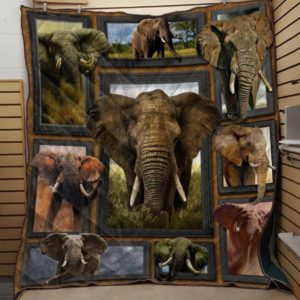 Elephant Wild Life Quilt Blanket Great Customized Blanket For Birthday Christmas Thanksgiving Anniversary