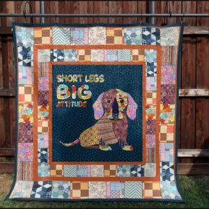 Dachshund Big Heart Short Legs Colorful Pattern Quilt Blanket Great Customized Blanket Gifts For Birthday Christmas Thanksgiving