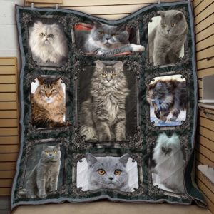 Shorthair Cat, Longhair Cat, White Cat, Grey Cat Quilt Blanket Great Customized Blanket Gifts For Birthday Christmas Thanksgiving