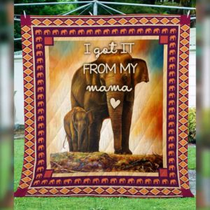 Elephant Mama I Got It From My Mama Quilt Blanket Great Customized Blanket Gifts For Birthday Christmas Thanksgiving